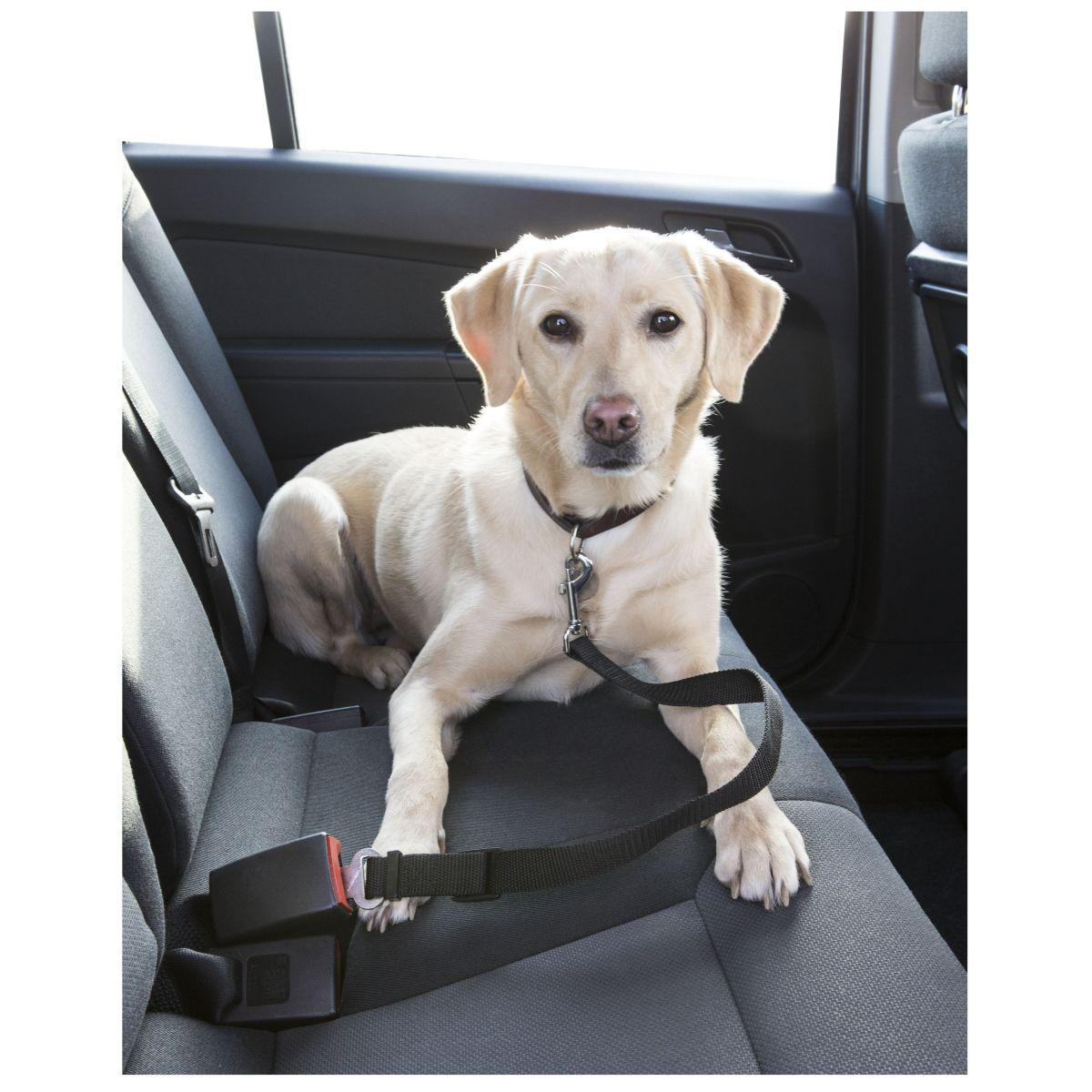 MAMMOOTH Bezpečnostní pás do auta pro psy, 40 - 60 cm